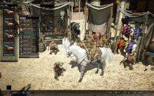 Скриншот игры - Black Desert